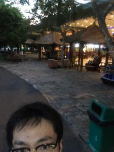 large_photo (2)